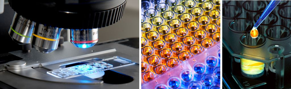 Analytical sciences - Research & development