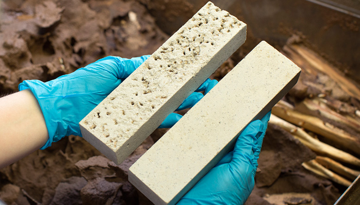 Material comparison before and after exposure in a termite breeding tank.