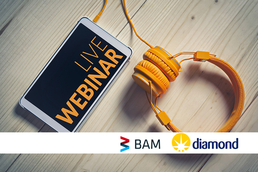 Live-webinar BAM and Diamond Light Source