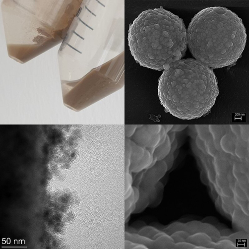 Polymeric core particles