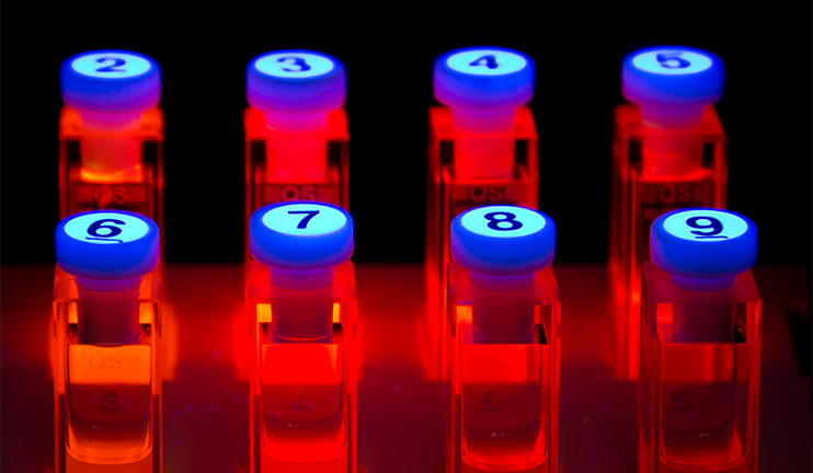 Numbered samples with photoluminescent substances shine red.